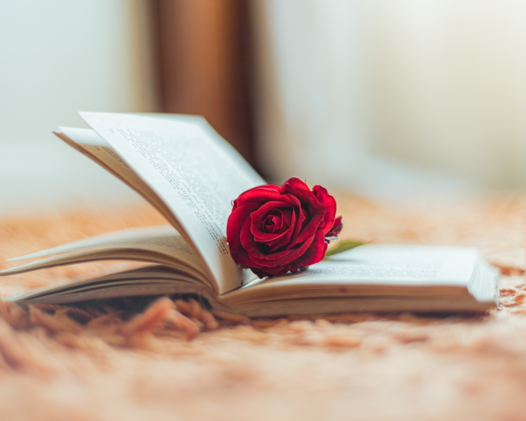 St Jordi: Day of the Book and the Rose in Barcelona